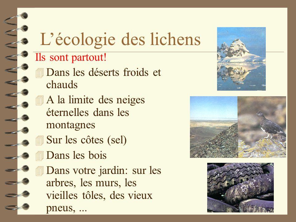 Chaque espèce a besoin pour survivre de conditions écologiques très strictes! 4 luminosité 4 nature du substrat (roche, arbre, arbres morts,...) 4 pH
