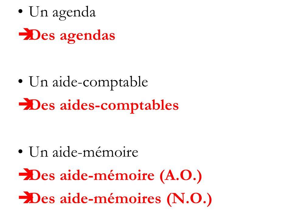 Un agenda Des agendas Un aide-comptable Des aides-comptables Un aide-mémoire Des aide-mémoire (A.O.) Des aide-mémoires (N.O.)