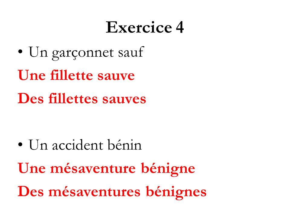 Exercice 4 Un garçonnet sauf Une fillette sauve Des fillettes sauves Un accident bénin Une mésaventure bénigne Des mésaventures bénignes