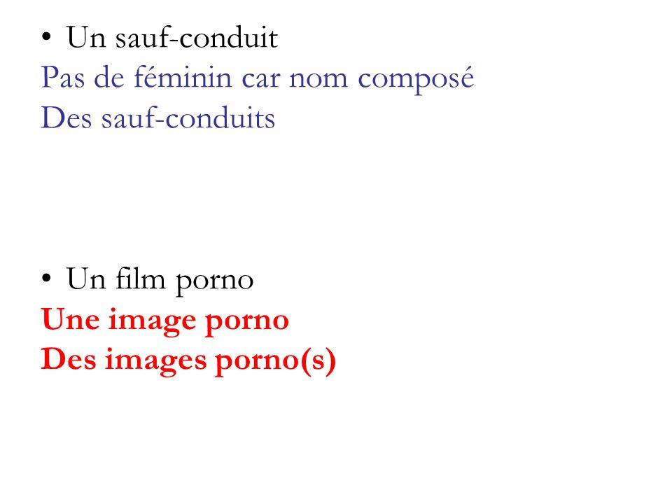Un sauf-conduit Pas de féminin car nom composé Des sauf-conduits Un film porno Une image porno Des images porno(s)