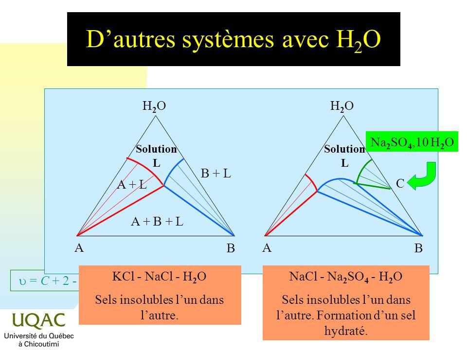 = C + 2 - Dautres systèmes avec H 2 O H2OH2O A B Solution L H2OH2O A B KCl - NaCl - H 2 O Sels insolubles lun dans lautre. NaCl - Na 2 SO 4 - H 2 O Se