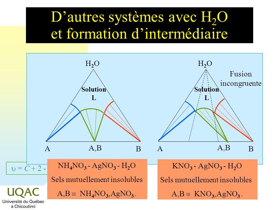 = C + 2 - Dautres systèmes avec H 2 O et formation de sels ternaires ou hydratés H2OH2O A B Solution L H2OH2O A B CaCl 2 - MgCl 2 - H 2 O à 25 °C Sels mutuellement insolubles D CaCl 2,MgCl 2,12H 2 O.