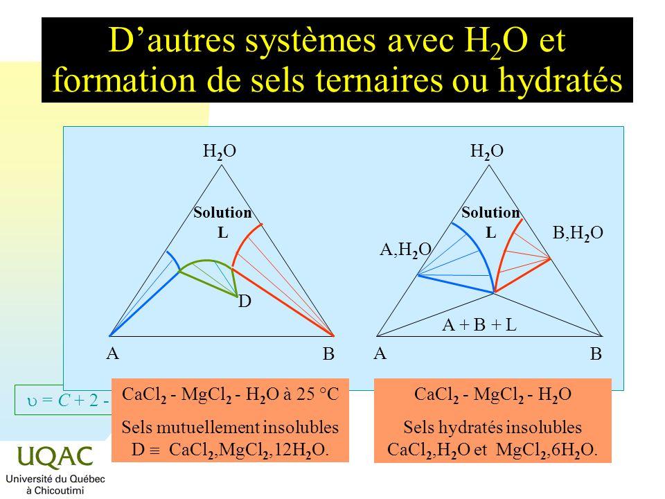 = C + 2 - Dautres systèmes avec formation de sels mutuellement solubles H2OH2O A B Solution L H2OH2O A B (NH 4 ) 2 SO 4 - K 2 SO 4 à 25 °C Sels totalement miscibles.