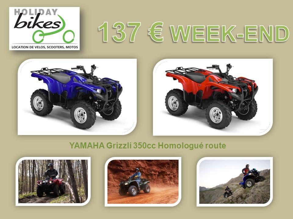 YAMAHA Grizzli 350cc Homologué route