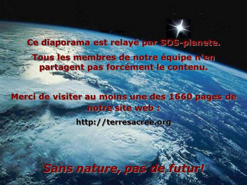 Ce diaporama est relayé par SOS-planete.