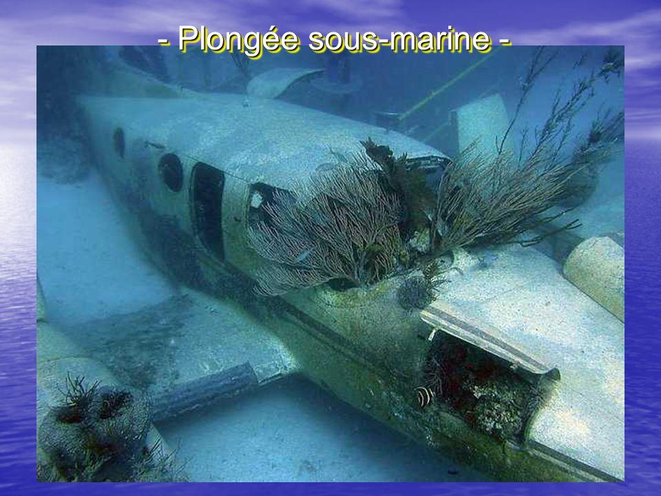 - Plongée sous-marine -