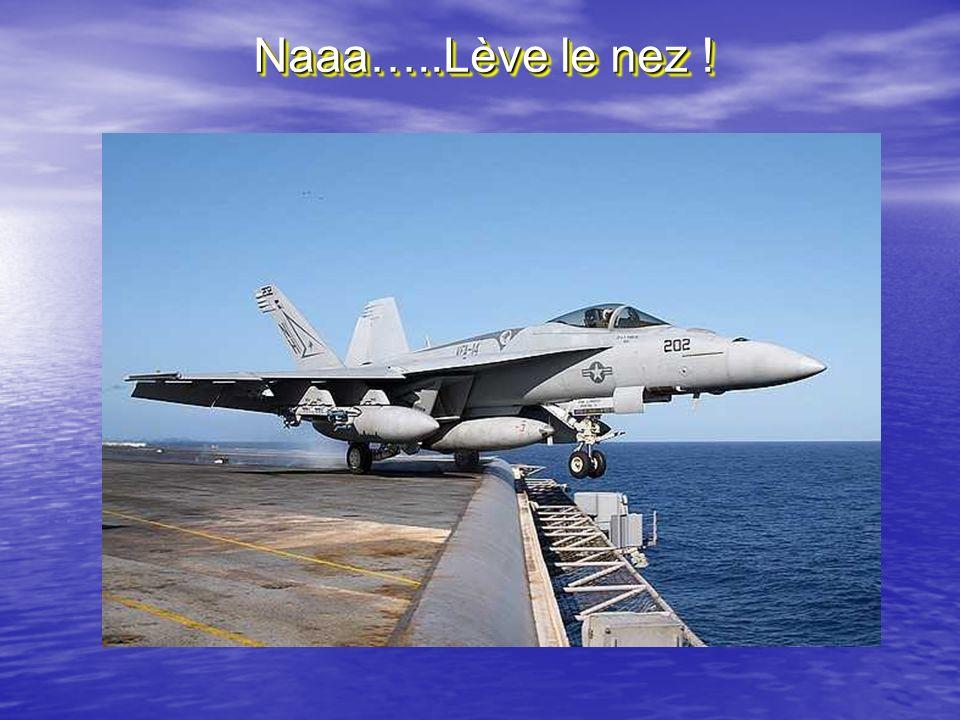 Naaa…..Lève le nez !