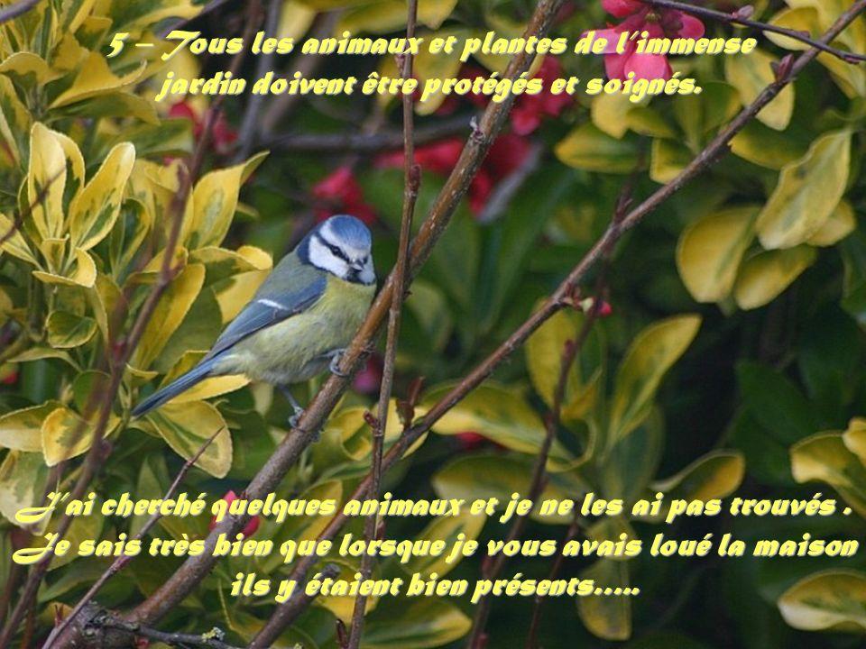 5 – Tous les animaux et plantes de limmense jardin doivent être protégés et soignés.