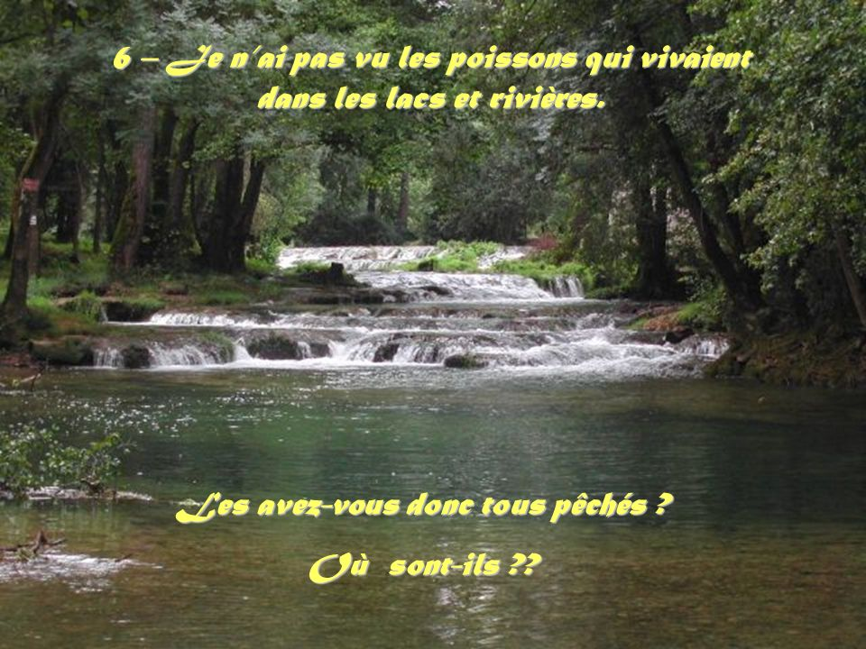 6 – Je nai pas vu les poissons qui vivaient dans les lacs et rivières.