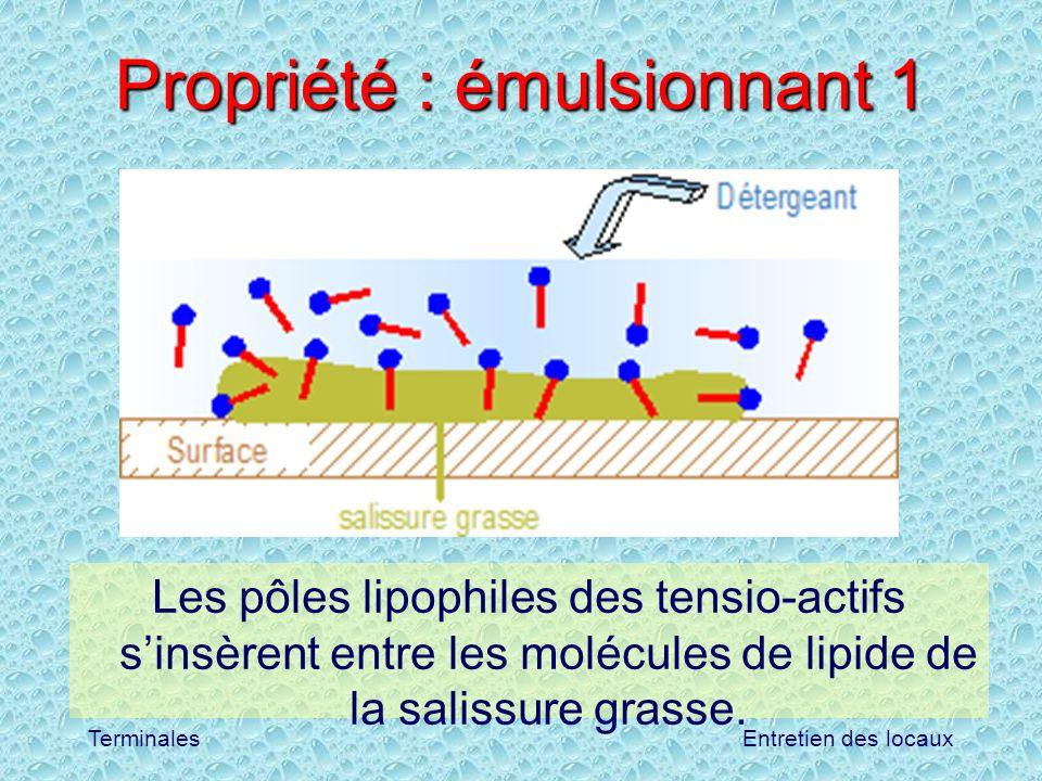 Entretien des locauxTerminales Propriété : émulsionnant 1 Les pôles lipophiles des tensio-actifs sinsèrent entre les molécules de lipide de la salissu