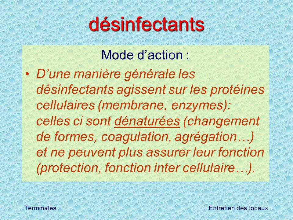 Entretien des locauxTerminales désinfectants Mode daction : Dune manière générale les désinfectants agissent sur les protéines cellulaires (membrane,