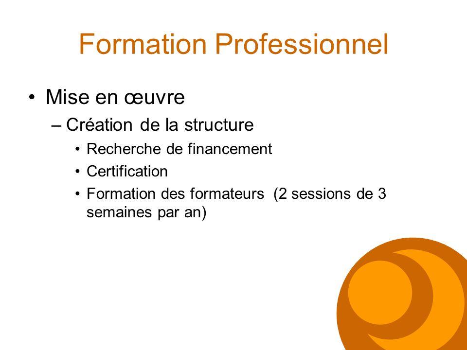 Formation Professionnel Mise en œuvre –Création de la structure Recherche de financement Certification Formation des formateurs (2 sessions de 3 semai