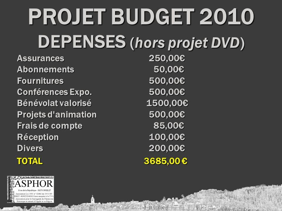 PROJET BUDGET 2010 DEPENSES (hors projet DVD) Assurances 250,00 Abonnements 50,00 Fournitures 500,00 Conférences Expo.