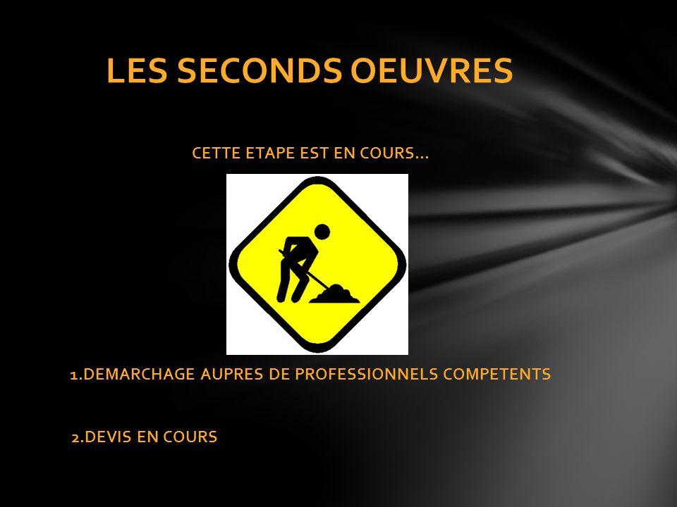 CETTE ETAPE EST EN COURS… 1.DEMARCHAGE AUPRES DE PROFESSIONNELS COMPETENTS 2.DEVIS EN COURS LES SECONDS OEUVRES