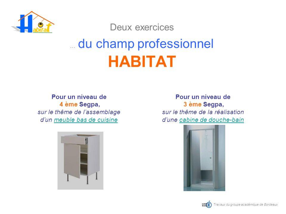 Deux exercices … du champ professionnel HABITAT Travaux du groupe académique de Bordeaux Pour un niveau de 4 ème Segpa, sur le thême de lassemblage du