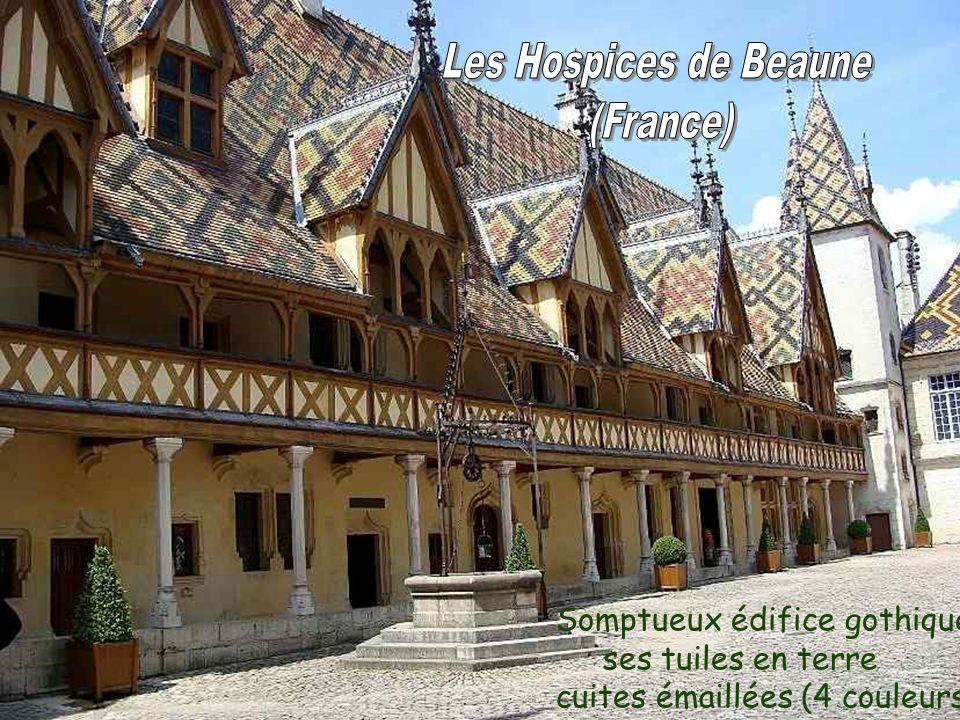 Somptueux édifice gothique ses tuiles en terre cuites émaillées (4 couleurs)