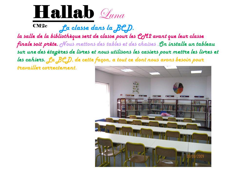 Nehmé Stéphanie Cm2c La classe en BCD La classe est une bibliothèque, parce que notre classe nest pas encore construite. Il y a seulement des livres à