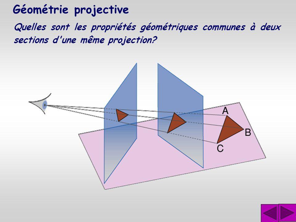 Géométrie projective Les notions de projection et de section soulèvent des problèmes géométriques importants que l'on peut résumer en deux questions :