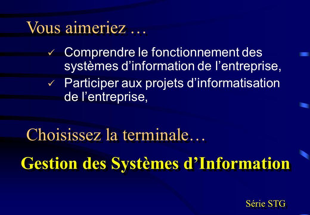 Comprendre le fonctionnement des systèmes dinformation de lentreprise, Participer aux projets dinformatisation de lentreprise, Vous aimeriez … Choisis