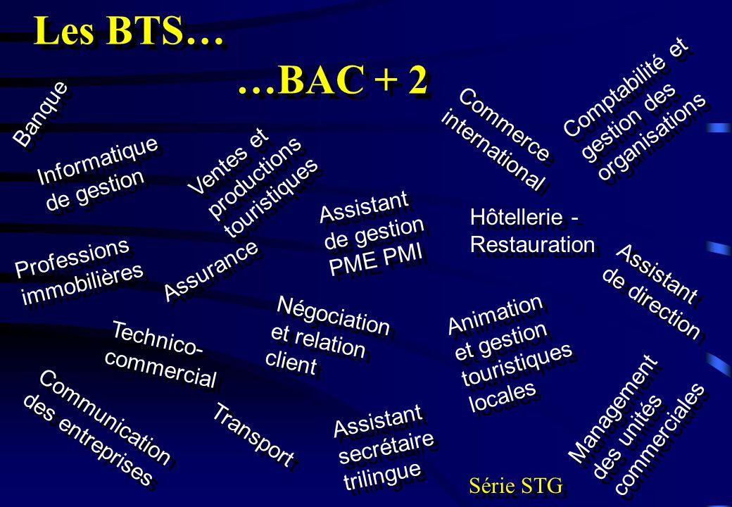 Informatique de gestion Banque Hôtellerie - Restauration Comptabilité et gestion des organisations Professions immobilières Assistant de gestion PME P