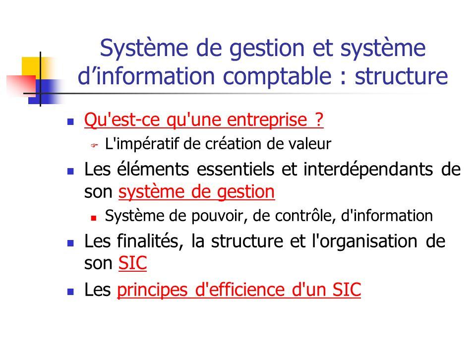 Système de gestion et système dinformation comptable : structure Qu est-ce qu une entreprise .