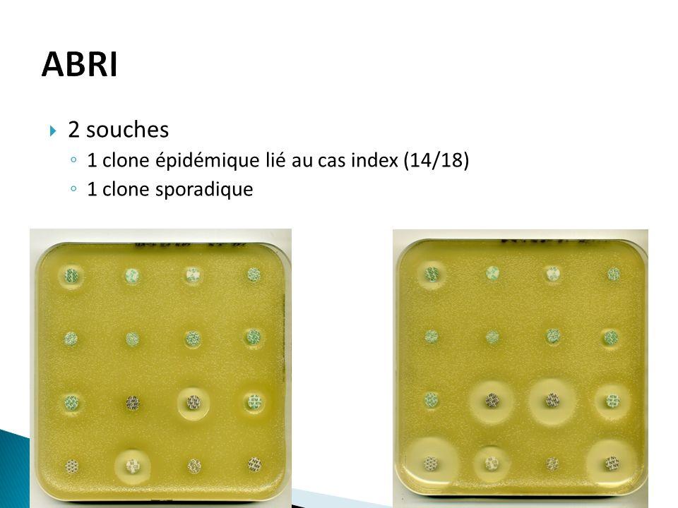 2 souches 1 clone épidémique lié au cas index (14/18) 1 clone sporadique