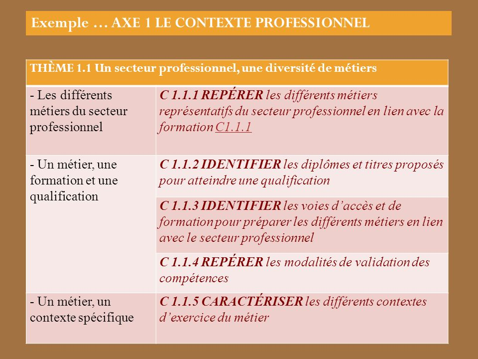 THÈME 1.1 Un secteur professionnel, une diversité de métiers - Les différents métiers du secteur professionnel C 1.1.1 REPÉRER les différents métiers représentatifs du secteur professionnel en lien avec la formation C1.1.1C1.1.1 - Un métier, une formation et une qualification C 1.1.2 IDENTIFIER les diplômes et titres proposés pour atteindre une qualification C 1.1.3 IDENTIFIER les voies daccès et de formation pour préparer les différents métiers en lien avec le secteur professionnel C 1.1.4 REPÉRER les modalités de validation des compétences - Un métier, un contexte spécifique C 1.1.5 CARACTÉRISER les différents contextes dexercice du métier Exemple … AXE 1 LE CONTEXTE PROFESSIONNEL