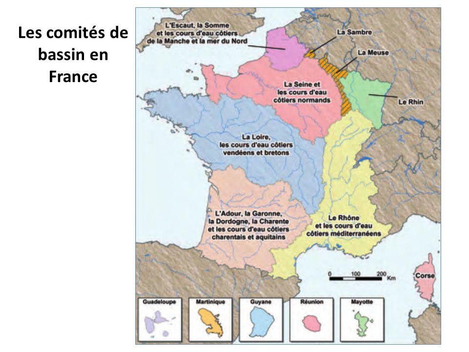 Les comités de bassin en France
