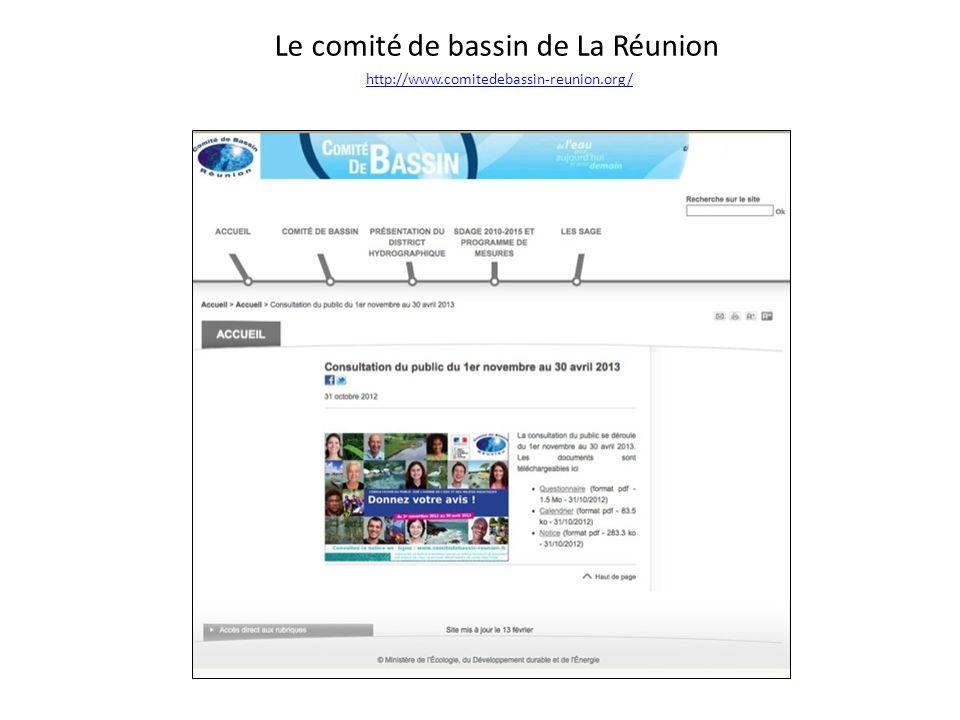 Le comité de bassin de La Réunion http://www.comitedebassin-reunion.org/ http://www.comitedebassin-reunion.org/