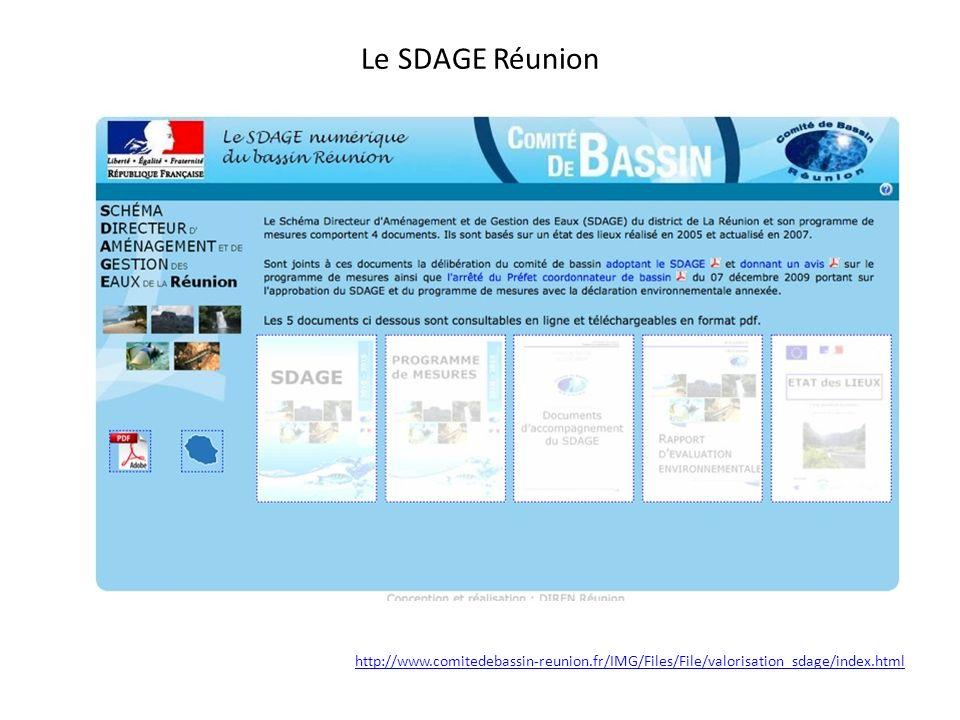 SDAGE de La Réunion adopté en 2001