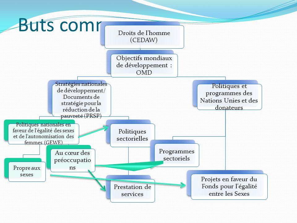 Buts communs Droits de l'homme (CEDAW) Objectifs mondiaux de développement : OMD Stratégies nationales de développement/ Documents de stratégie pour l