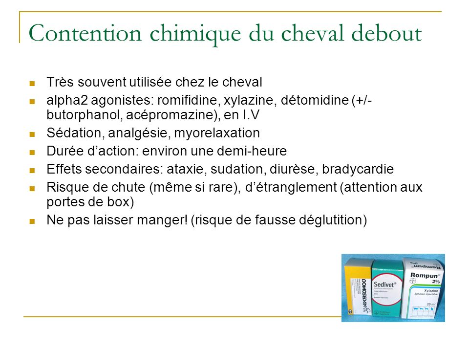 Contention chimique du cheval debout Très souvent utilisée chez le cheval alpha2 agonistes: romifidine, xylazine, détomidine (+/- butorphanol, acéprom