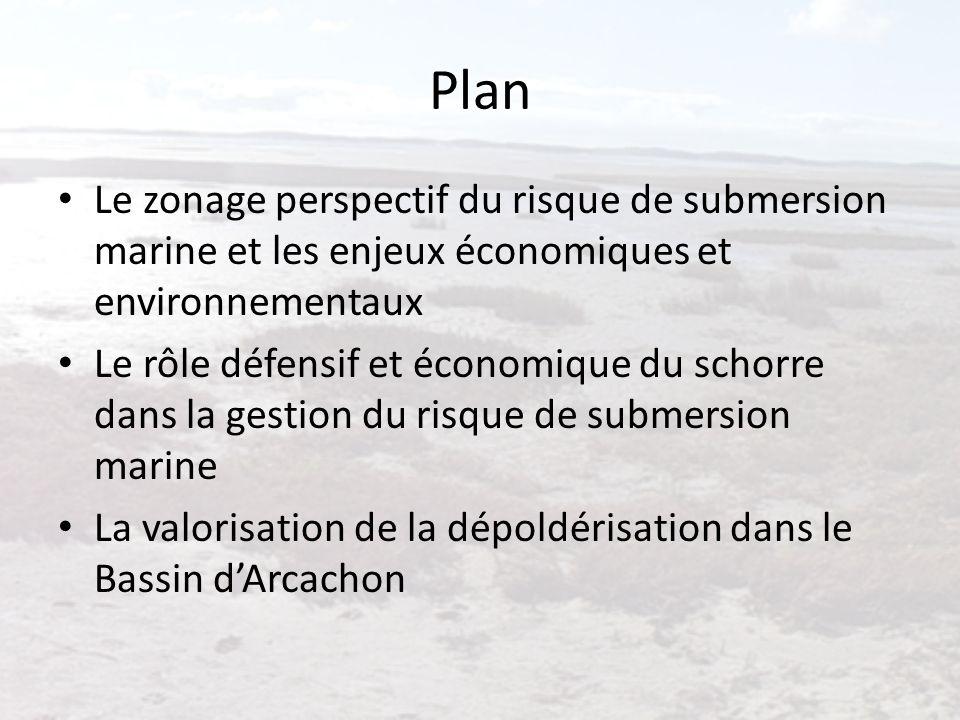 Plan Le zonage perspectif du risque de submersion marine et les enjeux économiques et environnementaux Le rôle défensif et économique du schorre dans