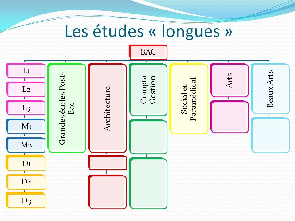 Les études « longues » BACL1L2L3M1M2D1D2D3 Grandes écoles Post- Bac Architecture Compta Gestion Social et Paramédical Arts Beaux Arts