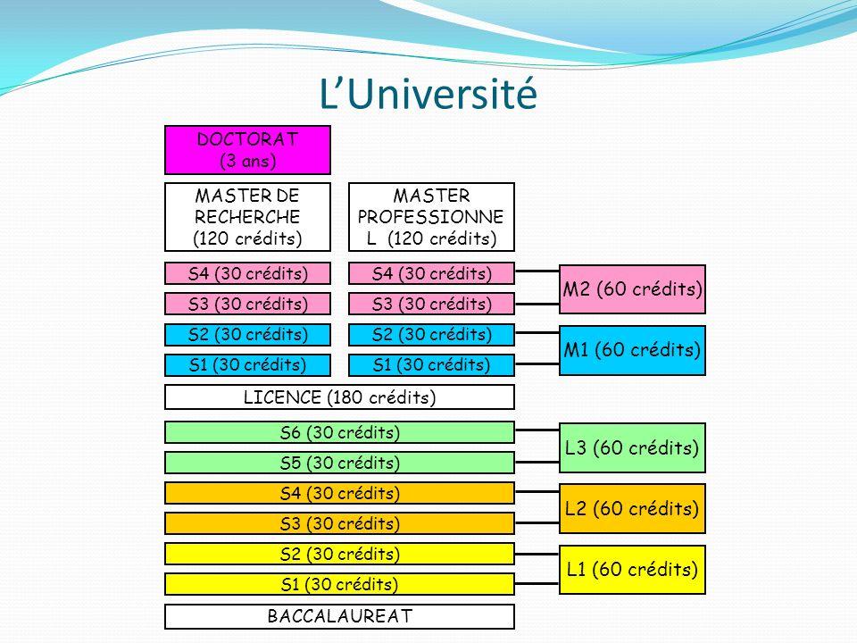 LUniversité BACCALAUREAT S1 (30 crédits) S2 (30 crédits) S3 (30 crédits) S4 (30 crédits) S5 (30 crédits) S6 (30 crédits) LICENCE (180 crédits) S1 (30