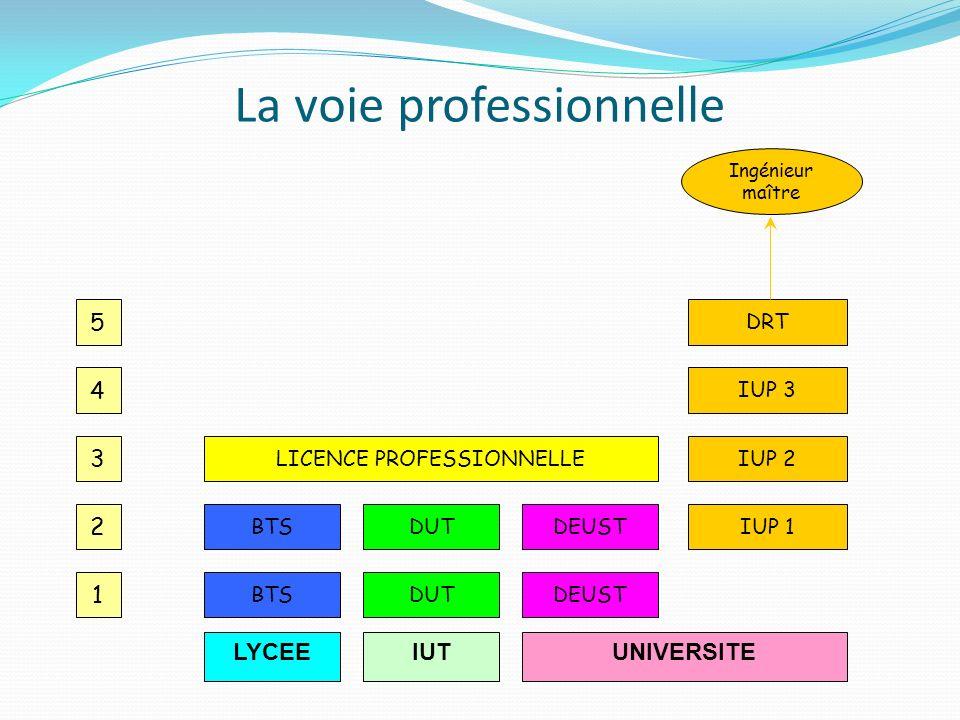 La voie professionnelle LYCEE 1 2 4 3 5 UNIVERSITE BTS LICENCE PROFESSIONNELLE IUP 1 IUT DUT DEUST IUP 2 IUP 3 DRT Ingénieur maître