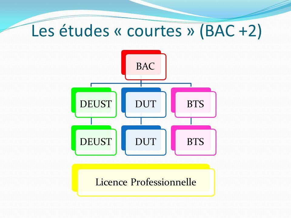Les études « courtes » (BAC +2) BACDEUST DUT BTS Licence Professionnelle