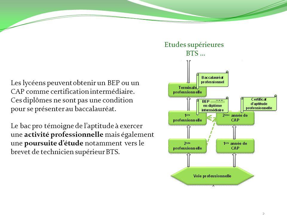 Les lycéens peuvent obtenir un BEP ou un CAP comme certification intermédiaire. Ces diplômes ne sont pas une condition pour se présenter au baccalauré