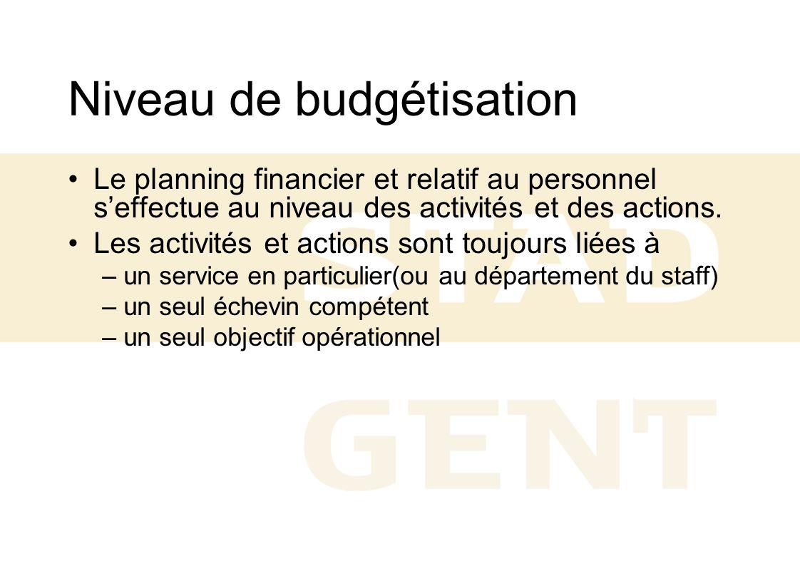 Niveau de budgétisation Le planning financier et relatif au personnel seffectue au niveau des activités et des actions. Les activités et actions sont