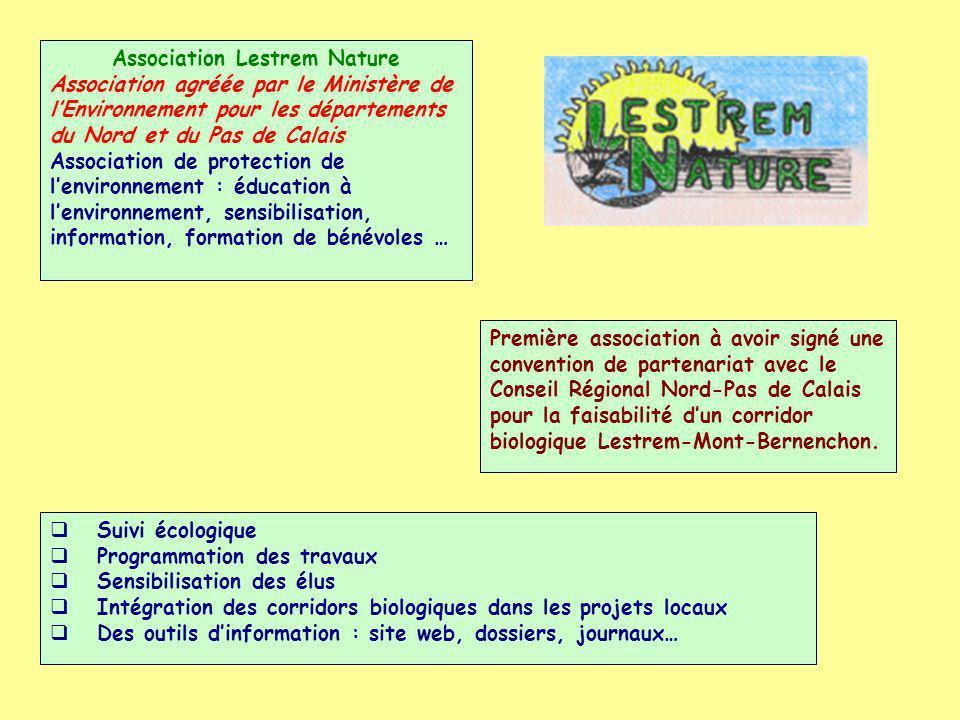 Association RéAgir Association dinsertion loi 1901 Maraîchage biologique, chantiers environnementaux, parcours dinsertion et développement local.