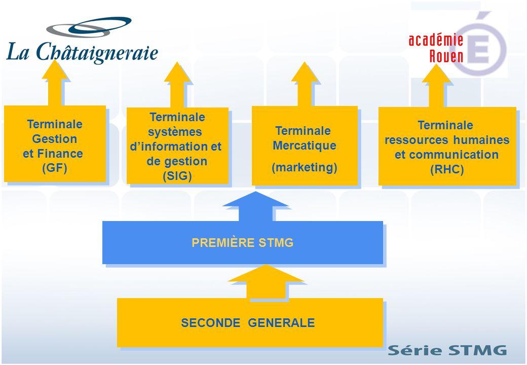PREMIÈRE STMG Terminale systèmes dinformation et de gestion (SIG) Terminale systèmes dinformation et de gestion (SIG) Terminale Gestion et Finance (GF