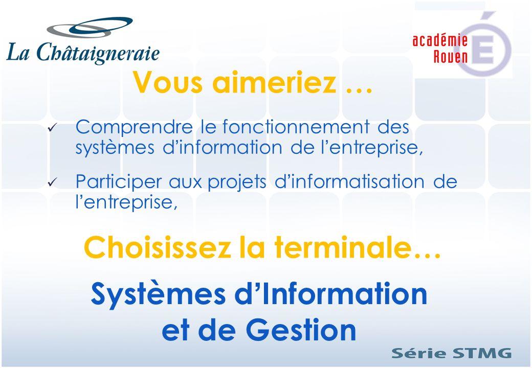 Comprendre le fonctionnement des systèmes dinformation de lentreprise, Participer aux projets dinformatisation de lentreprise, Systèmes dInformation e