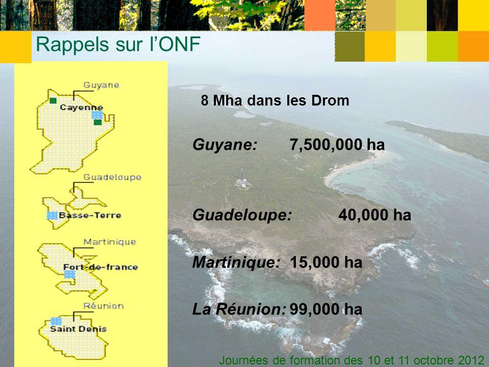 Journées de formation des 10 et 11 octobre 2012 8 Mha dans les Drom Guyane:7,500,000 ha Guadeloupe:40,000 ha Martinique:15,000 ha La Réunion:99,000 ha Rappels sur lONF