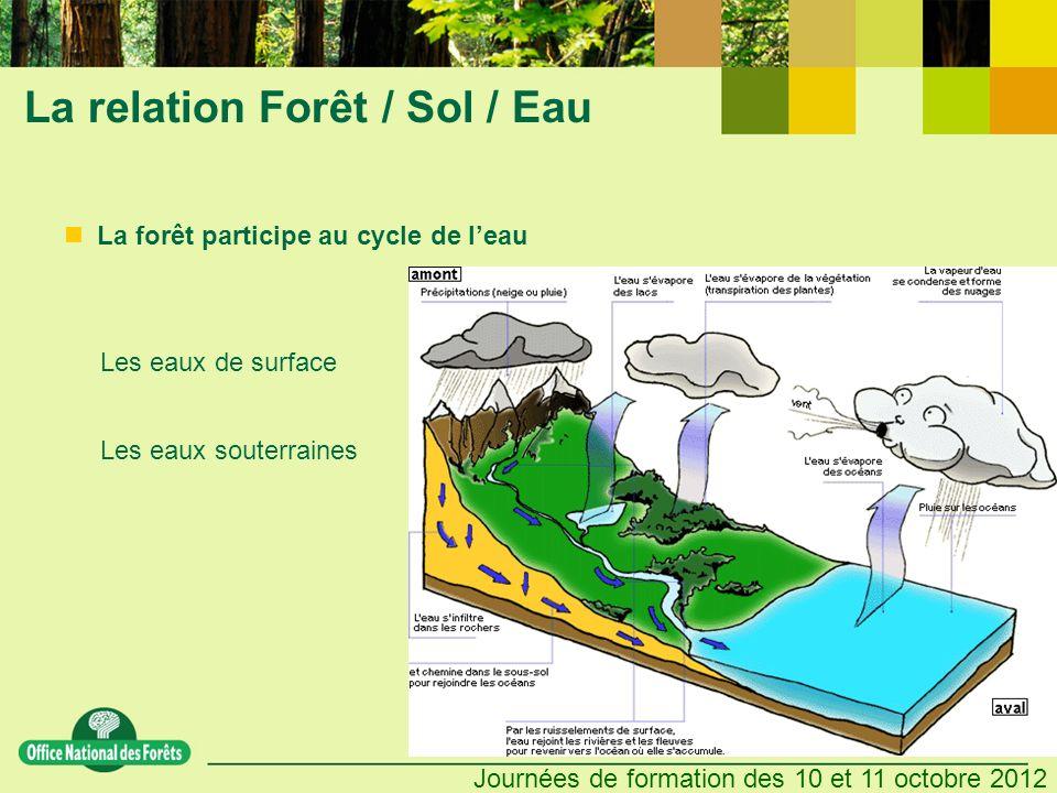 Journées de formation des 10 et 11 octobre 2012 La relation Forêt / Sol / Eau Les eaux de surface Les eaux souterraines Les bassins versants La forêt participe au cycle de leau