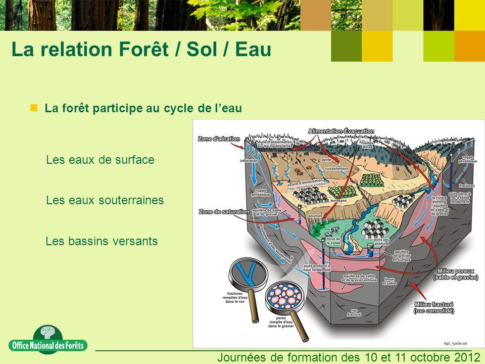 Journées de formation des 10 et 11 octobre 2012 La relation Forêt / Sol / Eau Les eaux de surface Les eaux souterraines Les bassins versants La forêt
