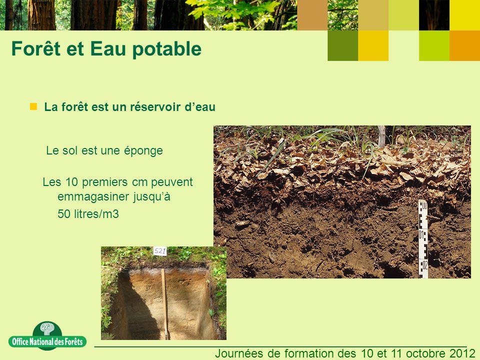 Journées de formation des 10 et 11 octobre 2012 Forêt et Eau potable La forêt est un réservoir deau Le sol est une éponge Les 10 premiers cm peuvent e