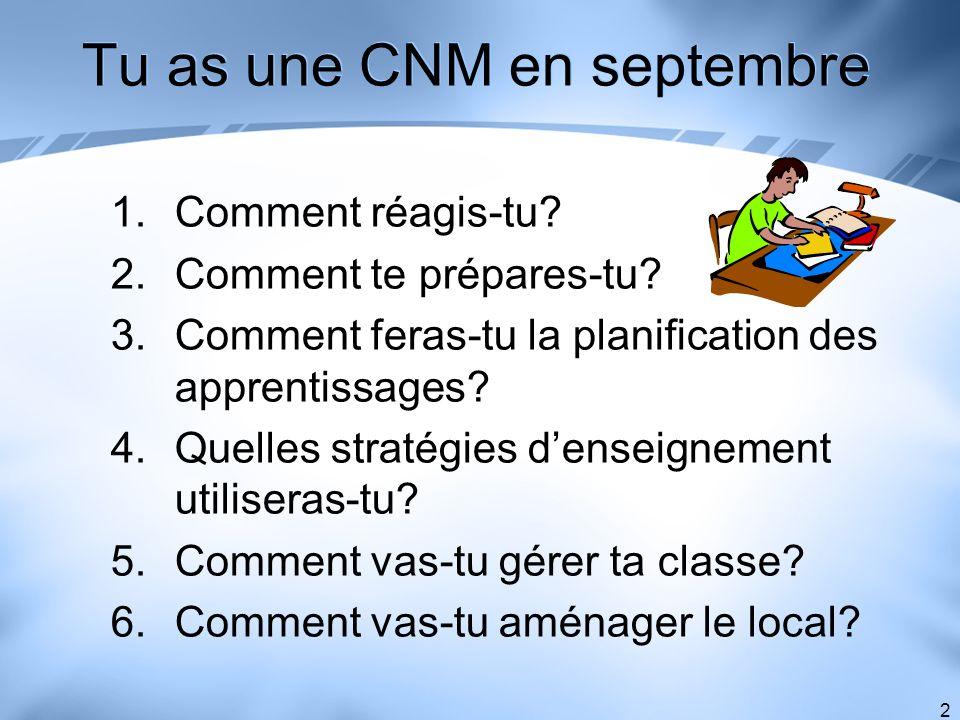 2 Tu as une CNM en septembre 1.Comment réagis-tu? 2.Comment te prépares-tu? 3.Comment feras-tu la planification des apprentissages? 4.Quelles stratégi