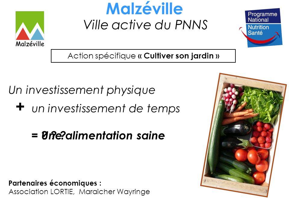 Malzéville Ville active du PNNS Action spécifique « Cultiver son jardin » = Une alimentation saine Partenaires économiques : Association LORTIE, Maraicher Wayringe Un investissement physique = .