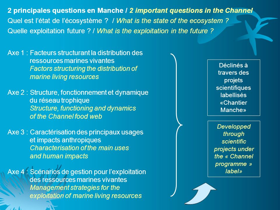 Axe 1 : Facteurs structurant la distribution des ressources marines vivantes Factors structuring the distribution of marine living resources Axe 2 : Structure, fonctionnement et dynamique du réseau trophique Structure, functioning and dynamics of the Channel food web Axe 3 : Caractérisation des principaux usages et impacts anthropiques Characterisation of the main uses and human impacts Axe 4 : Scénarios de gestion pour lexploitation des ressources marines vivantes Management strategies for the exploitation of marine living resources 2 principales questions en Manche / 2 important questions in the Channel Quel est létat de lécosystème .
