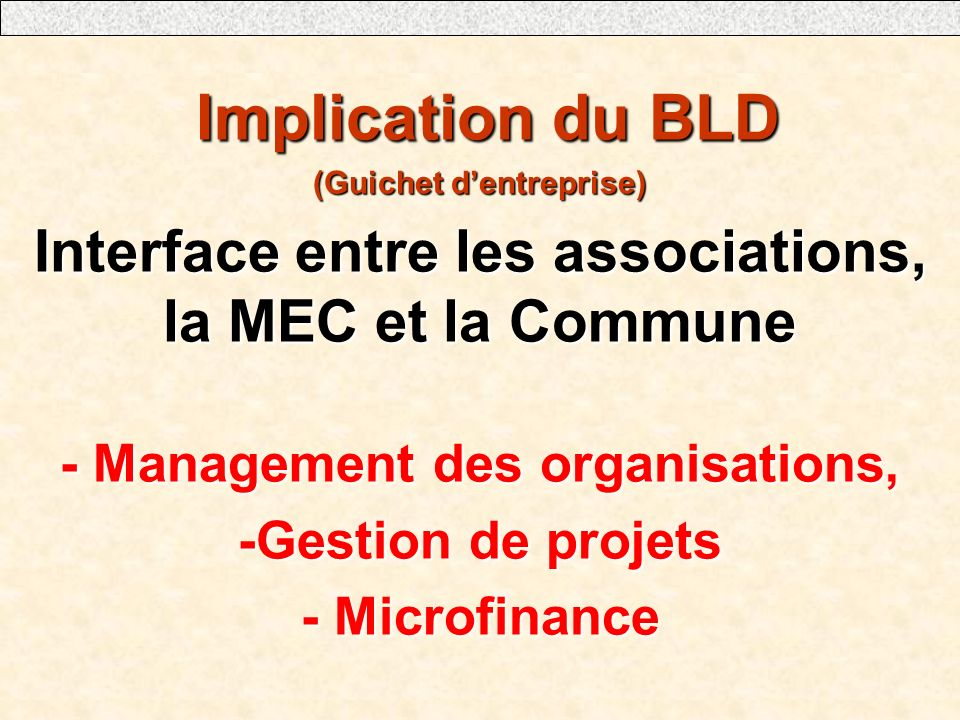 Implication du BLD Implication du BLD (Guichet dentreprise) Interface entre les associations, la MEC et la Commune - Management des organisations, -Gestion de projets - Microfinance